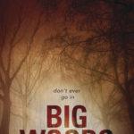 [PDF] [EPUB] Big Woods Download