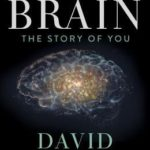 [PDF] [EPUB] The Brain: The Story of You Download
