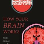 [PDF] [EPUB] How Your Brain Works: Inside the most complicated object in the known universe (New Scientist Instant Expert) Download