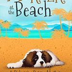 [PDF] [EPUB] Murder at the Beach (A Ridgeway Rescue Mystery Book 7) Download
